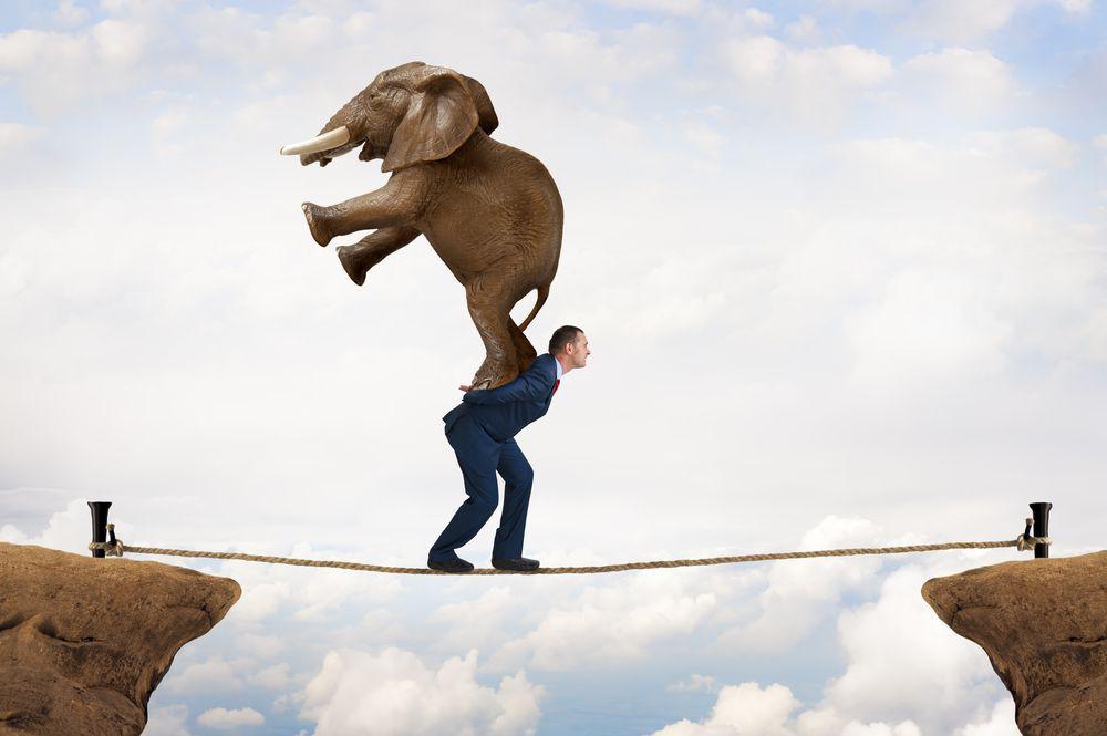 Persönliche Resilienz bei ProjektmanagerInnen – Ein Praxisbeispiel
