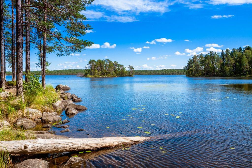 Finnland---Salamajarvi-National-Park